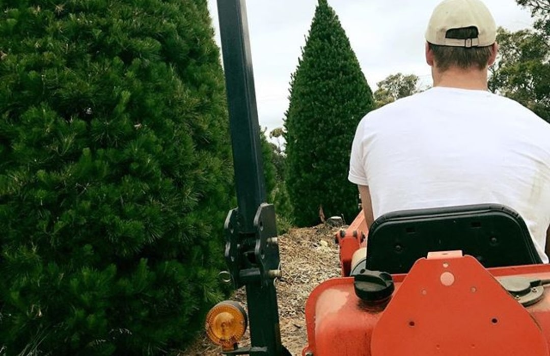 tractor_rides